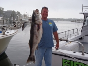 37lb Striper Hunter 2