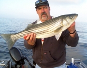 STRIPER crewchief