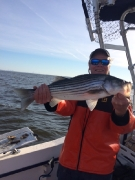2015 Members Catches