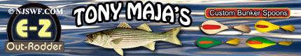 maja__banner_.png